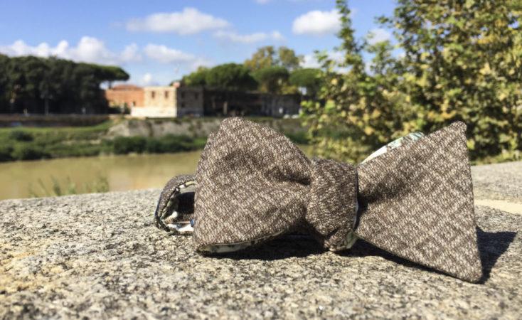 Farfallino Gentle a Pisa